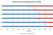 Business survival rates